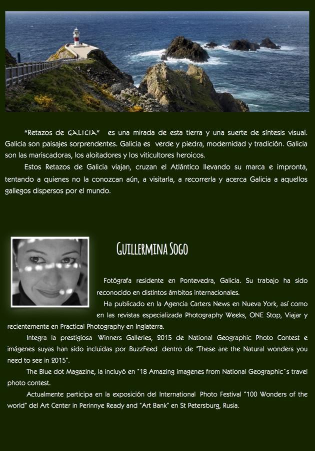 Catalogo exposición web 2