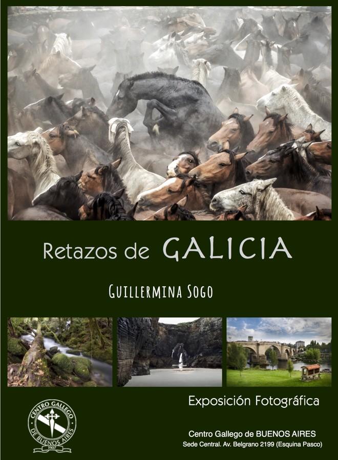 Catalogo exposición web